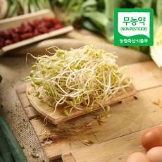 무농약 콩나물 (300g)